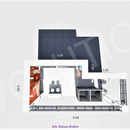 natalia vasiliev ii proiect 3d 2 450x450 NATALIA VASILIEV  II   Proiect 3D